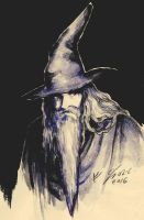 Gandalf by Miruna-Lavinia