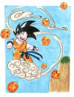 Toriyama time finish by DonoVanDine