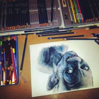 Smeagol drawing in progress by Cleicha