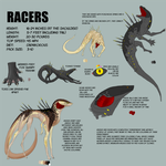 Racer Ref Sheet [OutDated] by unluckyth13teen