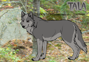 Tala in the Woods by Wolf-Tracks