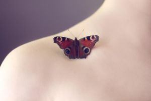 Butterfly's touch by fairyladyphotography