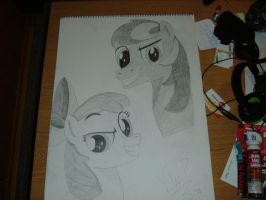 Apple Bloom and Black Gryphon (Big Picture) by vancepar08
