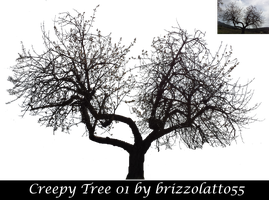 Creepy Tree 01 by Brizzolatto55