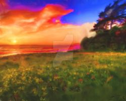 Sunset Ocean View by Zachary0701