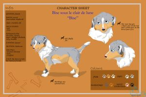 Bise_Character sheet by Aquene-lupetta