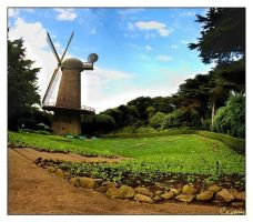 The windmill by cedrus