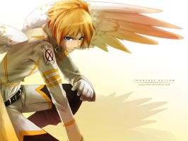 Fake Wings by indui