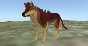 Feral Heart - Ragg Coyote Preset by PlagieTheCreep