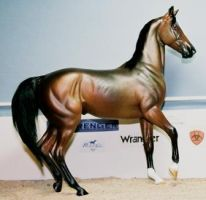 custom breyer akhal teke horse by tolthorse