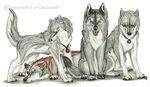 My Pack by RedSoulWolf13