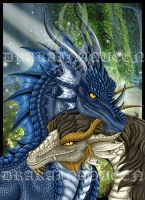 Dragon Couple - FS - by DrakainaQueen