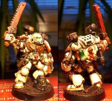 Space Marine Apocathery by Wanhus
