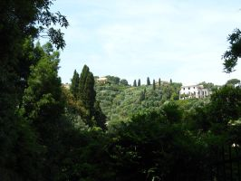 Cypress Trees of Italy by ArmyAmber