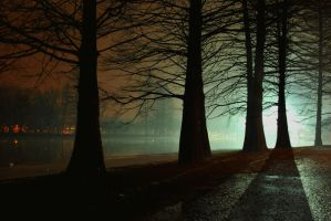 ..the..eeRie..NighT.. by Anotheroutsider
