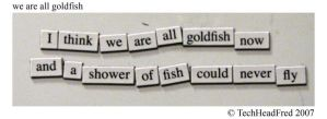 we are all goldfish by techheadfred