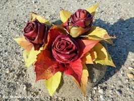 Fallen leaves rose from Hungary by Tamas Kanya by tom-tom1969