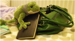 Froggy in the Bed by laracoa