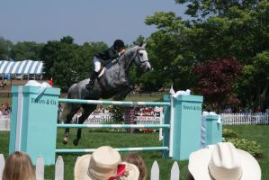 Show Jumping Stock 7 by megstheponystock