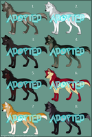 Adoptables 2009 - CLOSED by mirzers