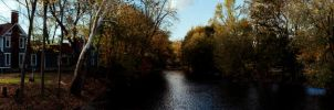 panorama through the woods by superjacqui