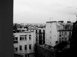 French Rooftops by surferpete