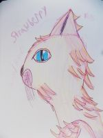 Strawberry the Cat by PioneeringAuthor