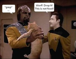 Drop it Worf by StrawberryWho