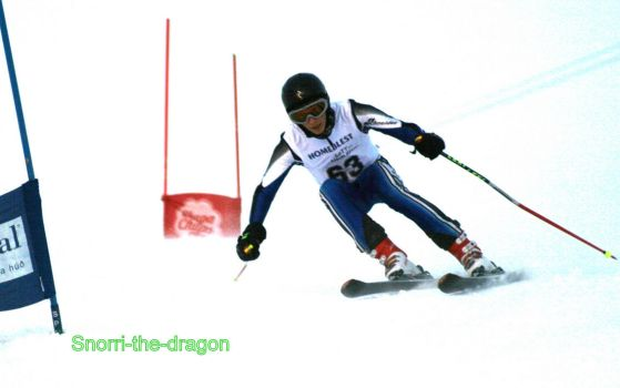 me Skiing by Snorri-the-dragon
