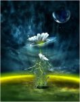 Moonflower by PEWOB