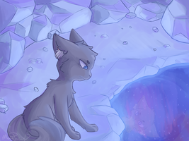Jayfeather at moonpool redraw by Moonpaw17