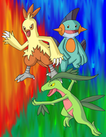 Grovyle, Combusken, Marshtomp by VirusMetalGarurumon