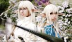 White Elf and Blue Elf by cosplayts