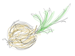 Non-Homework: Onion in 30 Seconds by PiermanWalter