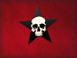 Black star and scull by sabotage-the-system