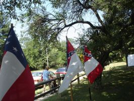 Confederate Flags by Archanubis
