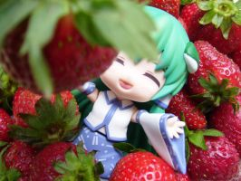 Sanae in the Strawberry Land by Aichiya