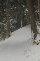 Snowy Path by Green-Ocean-Stock