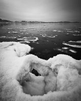 Tahoe's Iceberglets bw by nathanspotts