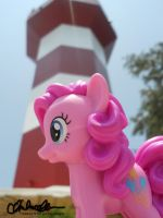 Pinkie Pie at Hilton Head SC by thatg33kgirl