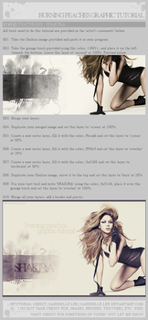Tutorial 006: Graphic by dannielle-lee