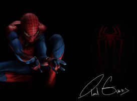 The Amazing Spider-Man 2012 by AngryPIG