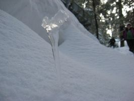 dropped icicle by Roooskiii69