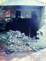 Abandoned Rubber Plant 013 by empyreus-stock