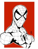 SpiderMan-Bust by masta8