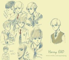 Harry EXO? by miyala0401