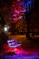 Parkbench in color by Sekundkvadrat