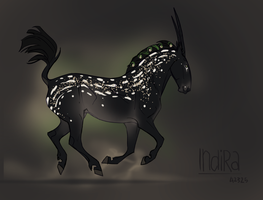 A2325 Indira by NorthEast-Stables