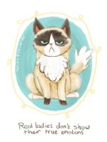 Grumpy Cat by tamaraR