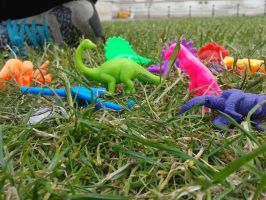 LOOK AT ALL MY DINOSAURS by dinostreet